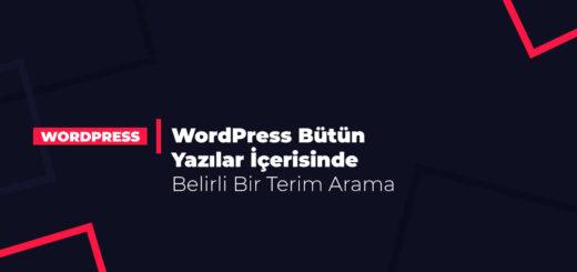 WordPress Bütün Yazılar İçerisinde Belirli Bir Terim Arama